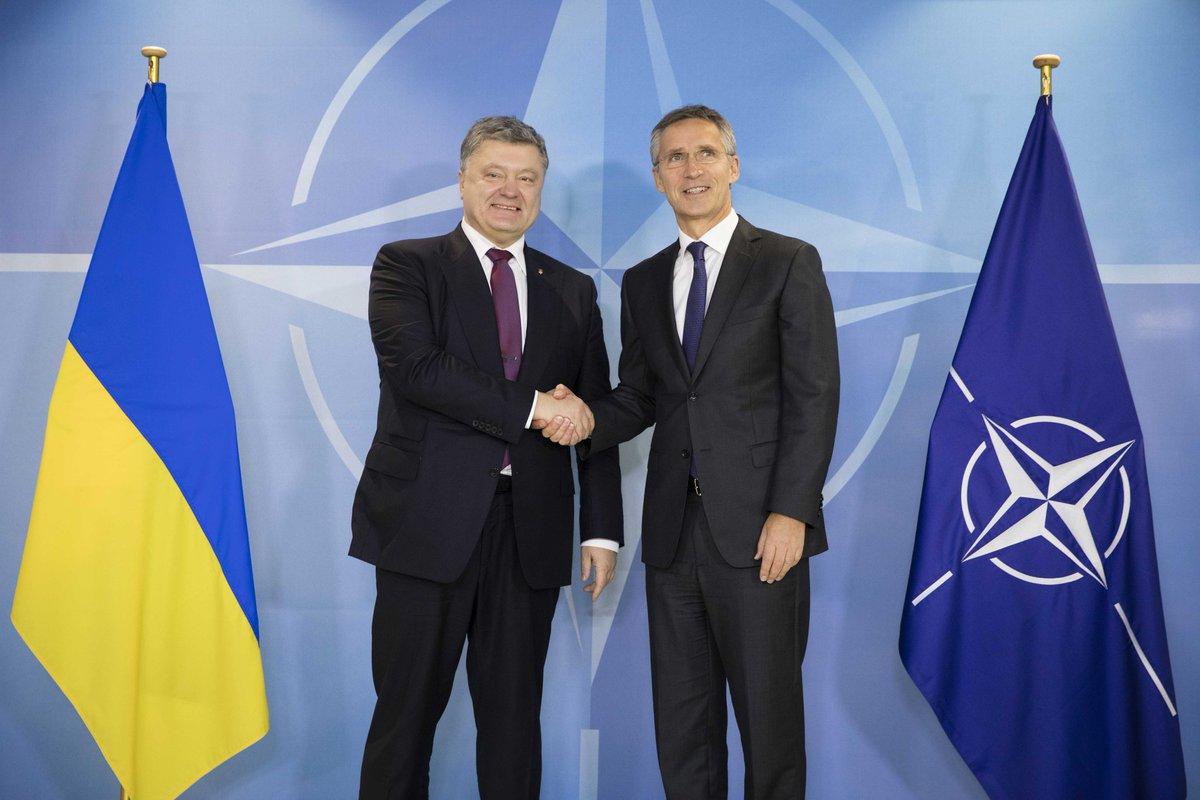 НАТО и Украина: армия живых не желает превращаться в армию «двухсотых»