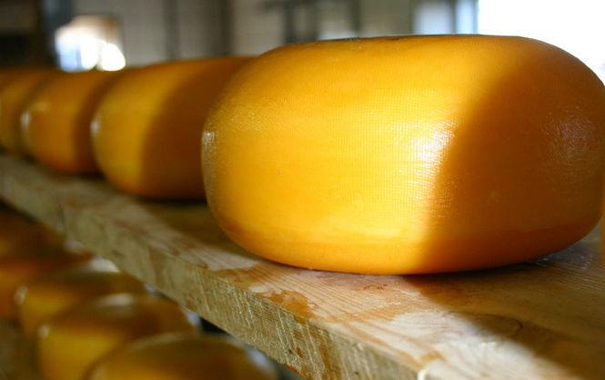 ВСимферополе сожгли 50 килограмм европейских сыров