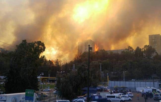 Сильнейший пожар вХайфе— эвакуированы около 60 тысяч человек