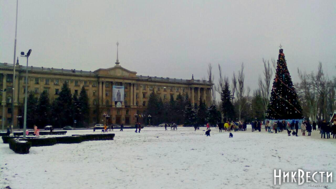 Где вУкраинском государстве самая высокая елка: появился занимательный рейтинг