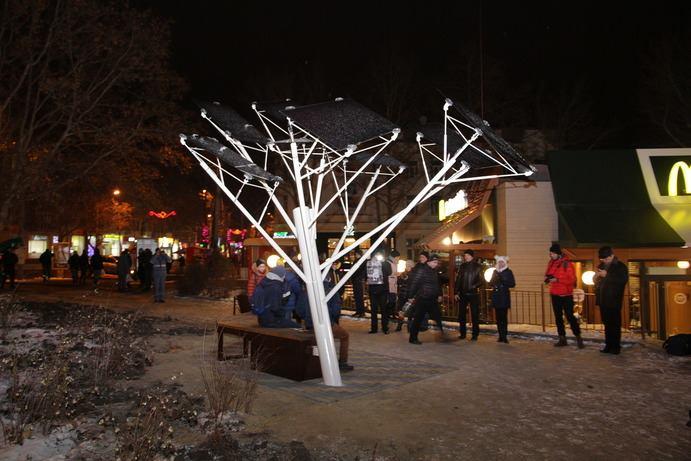 Вцентре города Николаева посадили «солнечное дерево»