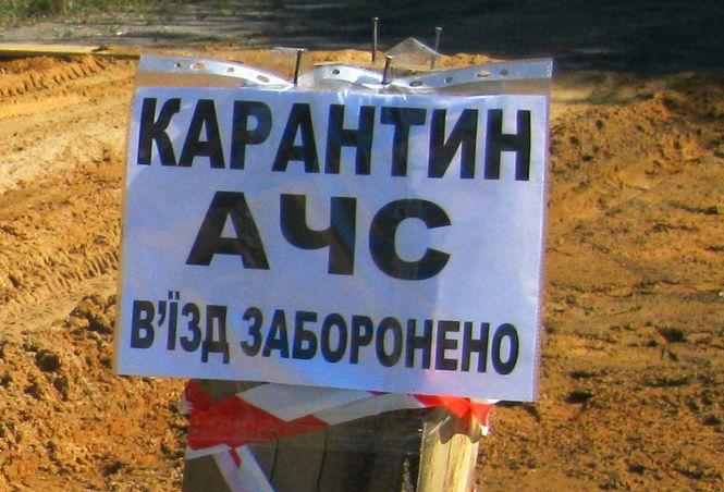 В Одесской области зафиксировали новые случаи гибели животных от африканской чумы свиней