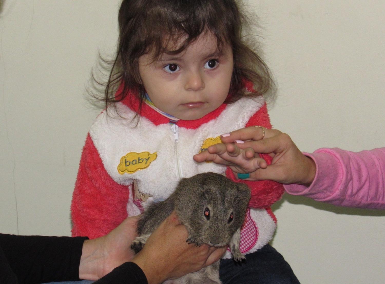 знакомим детей с реабилитационным центром