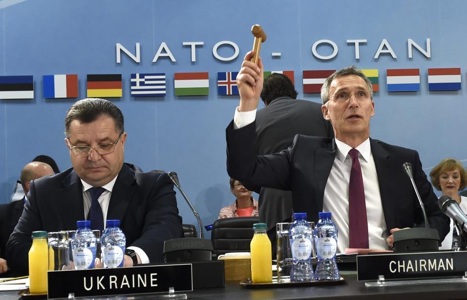 Страны НАТО выразили протест Венгрии из-за Украины