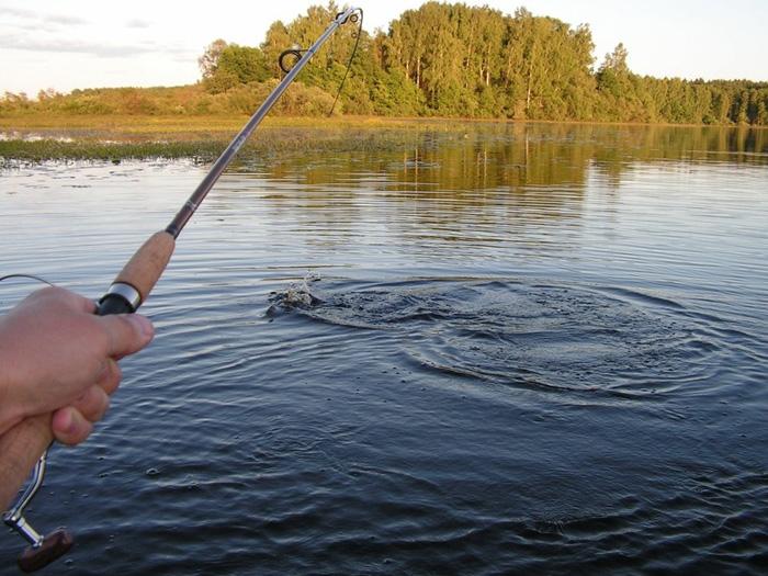 С1апреля орловцам запретят ловить рыбу
