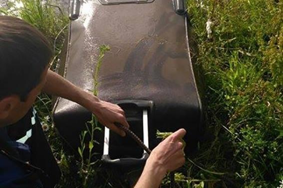 В милиции поведали подробности убийства студентки вИвано-Франковской области
