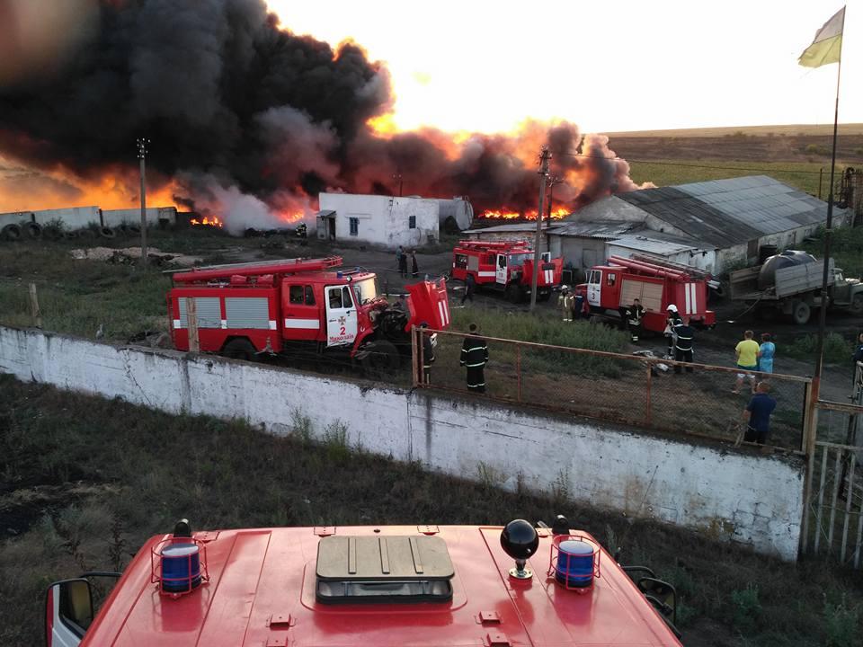 ВНиколаеве около городской свалки мастабный пожар— пламенеют покрышки