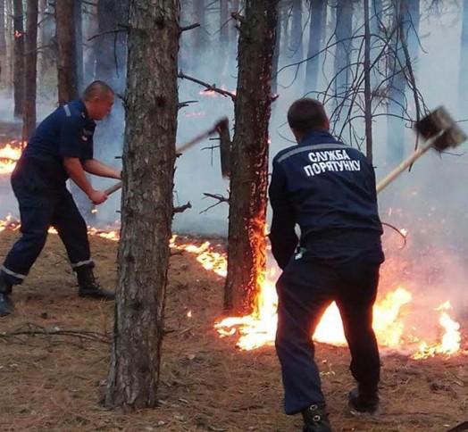 Лесной пожар произошел навХерсонской области