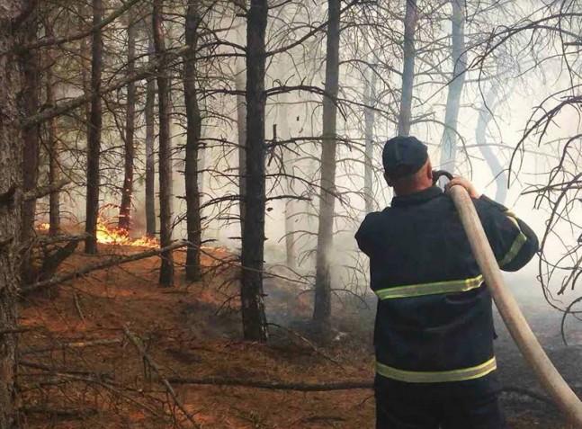 В 2-х областях государства Украины пламенеют леса