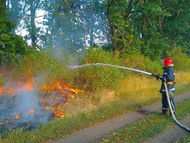 ГСЧС: вгосударстве Украина  сохраняется угроза пожаров