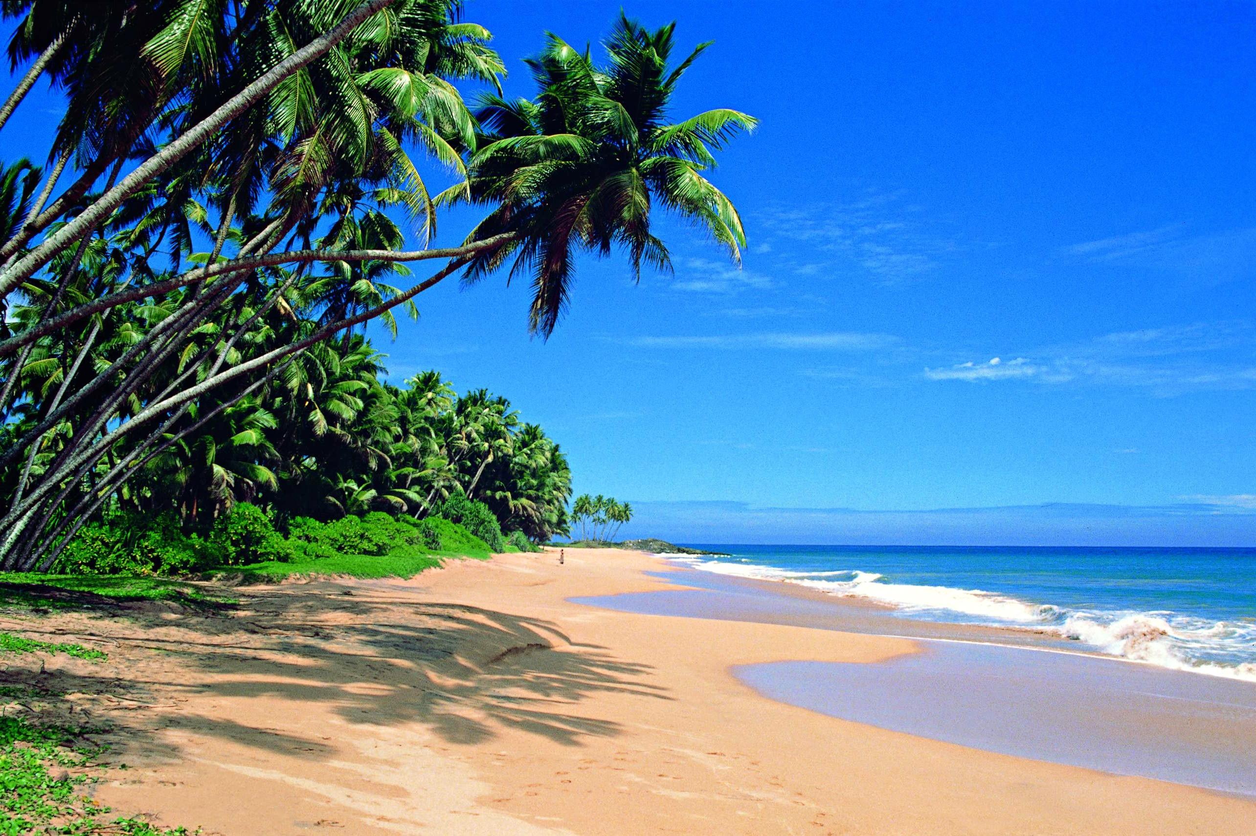SkyUp в конце октября запускает рейсы на Шри-Ланку | НикВести ...